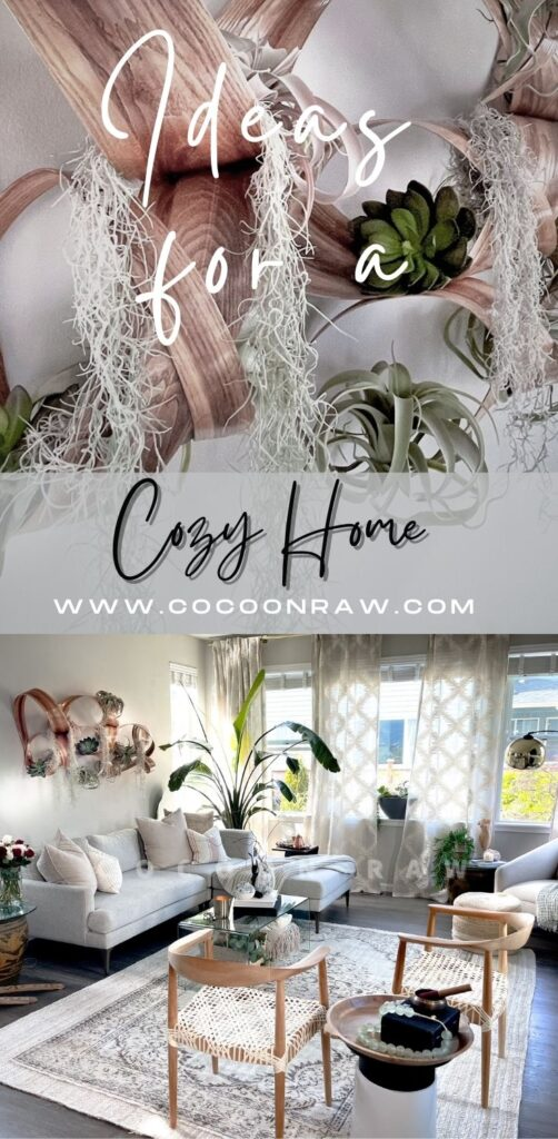 Cozy Home airplant display