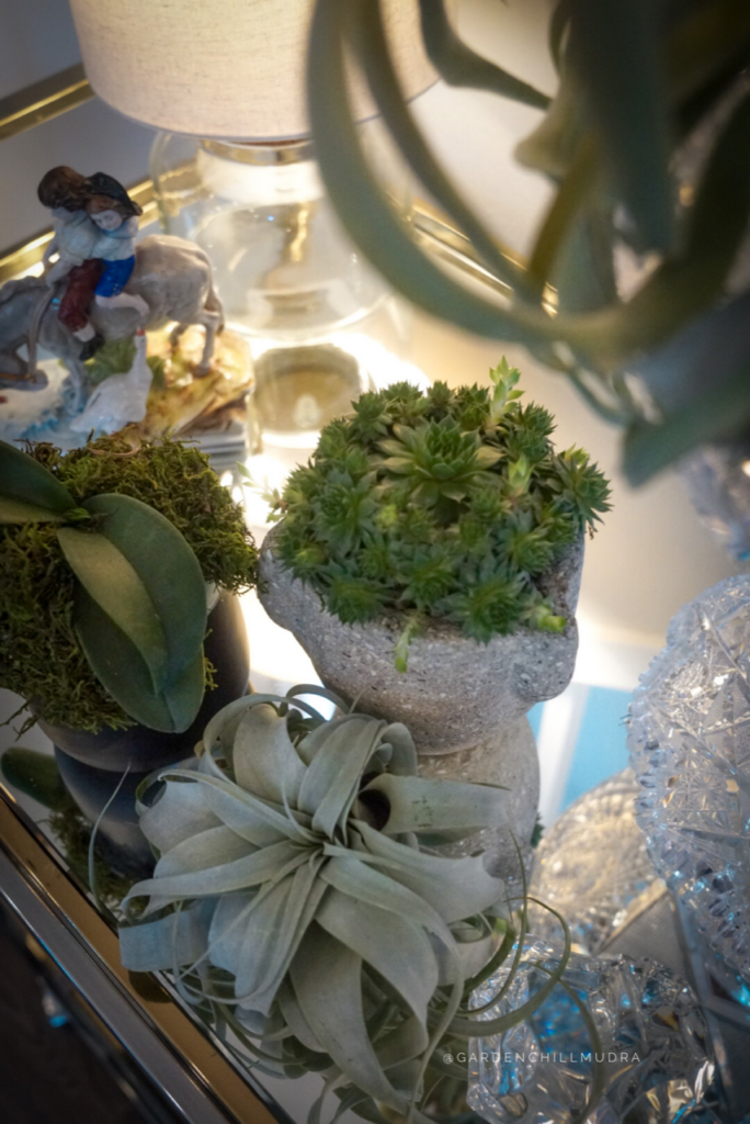 How to use other plants to add stunning contrast to the tablescape
