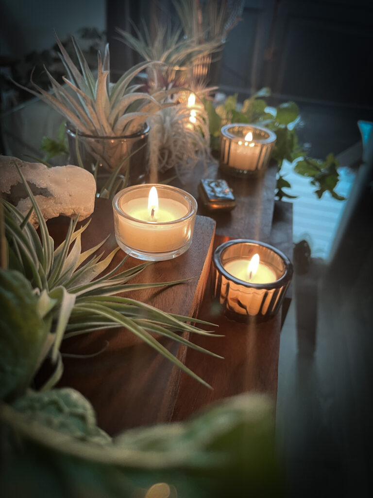 Creative Airplant Display Idea 6.  Candles in display.