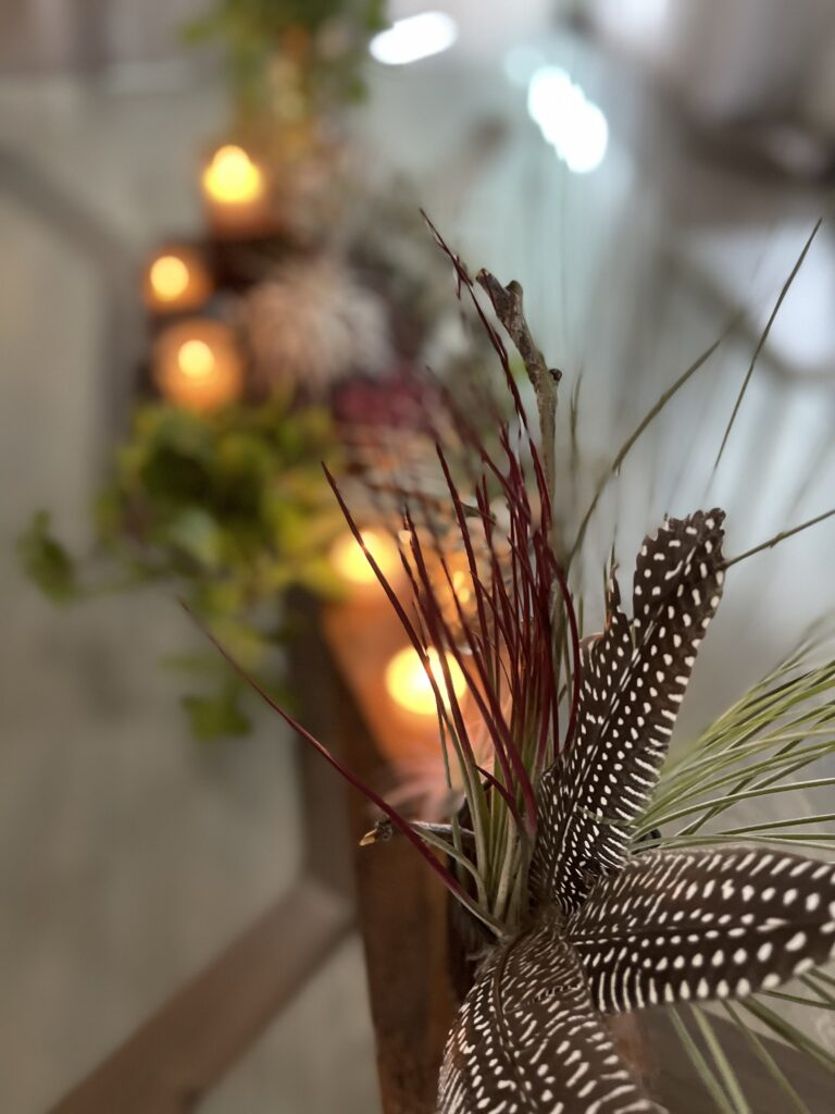 Creative Airplant Display Idea 7.  Feather with large airplant at the end.