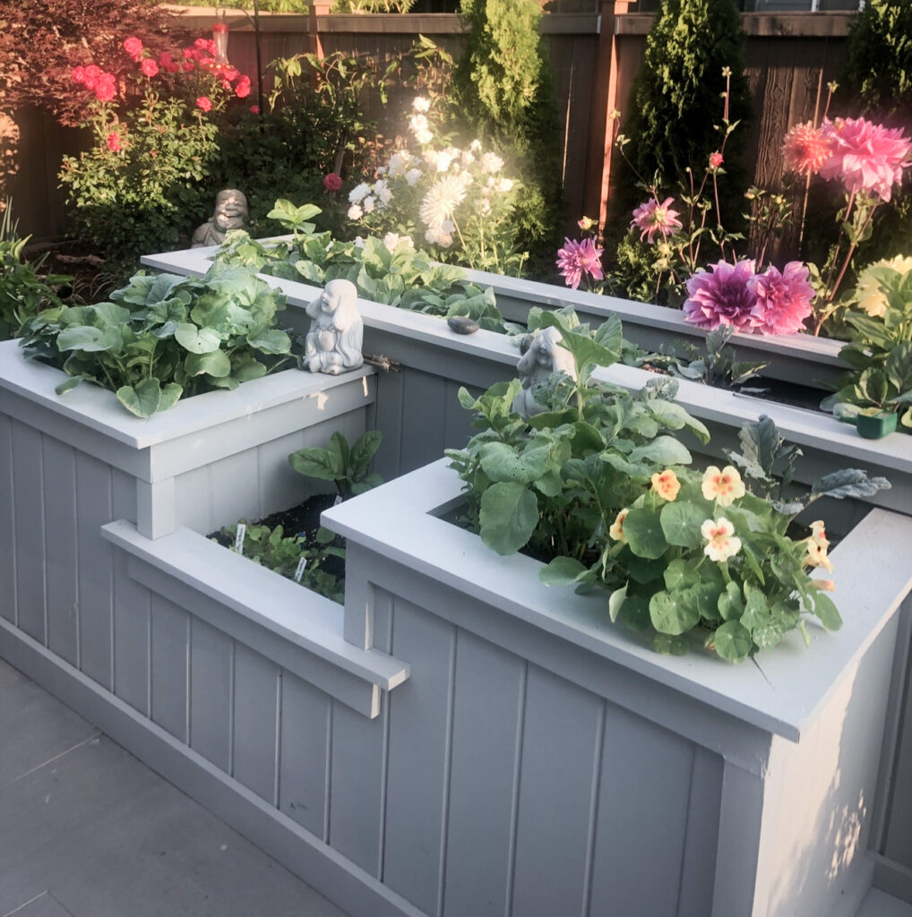 Favorite Gardening Tools 1. Unique garden Built in gray planter with plants growing and white roses in the background