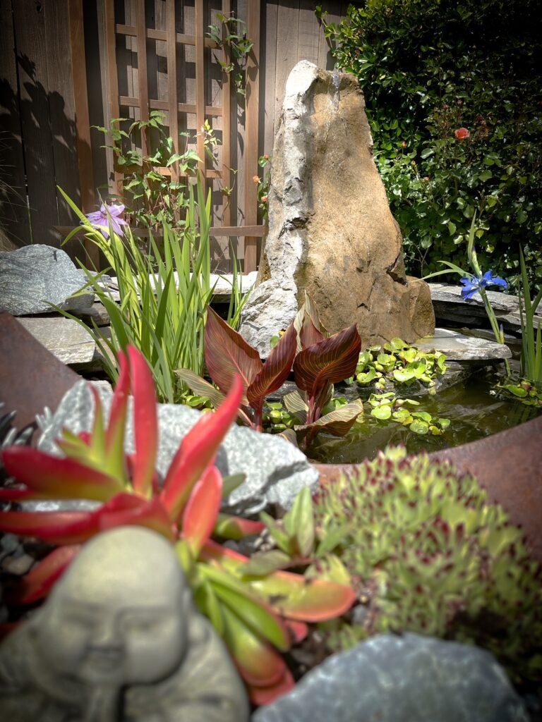 Convert a yard into a garden pond view.