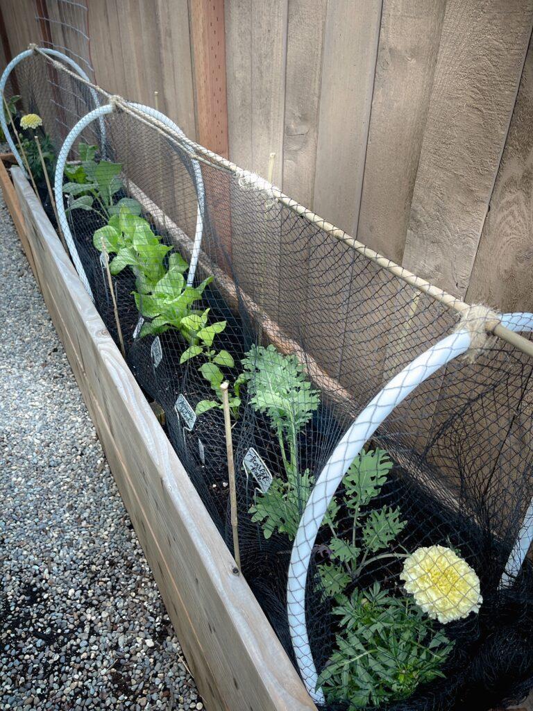 Easy Garden Bed Cover Long.