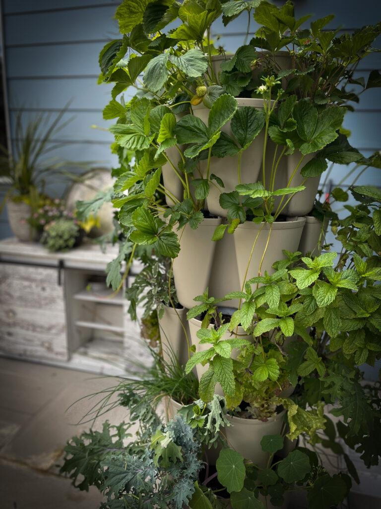 Favorite Essential Gardening Tool Tiered Garden