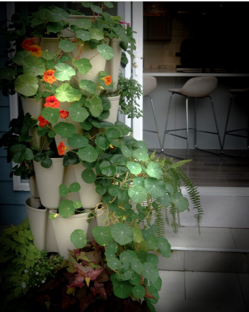 Favorite gardening Tools 18. Favorite Tiered planter with plants spilling around it to the floor.