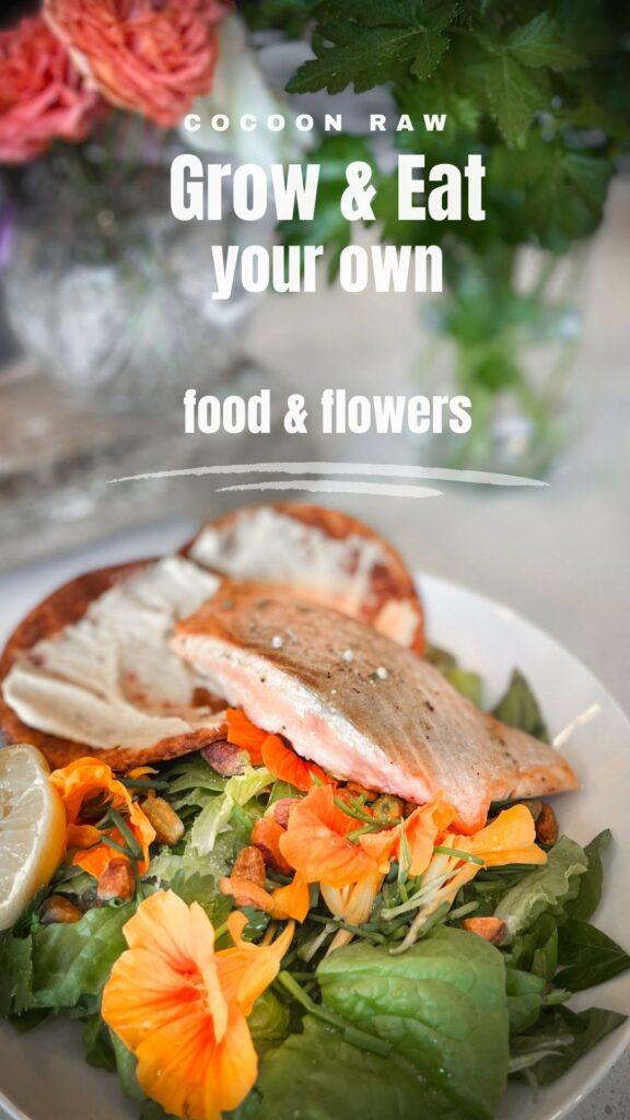 Recipe salmon dish
