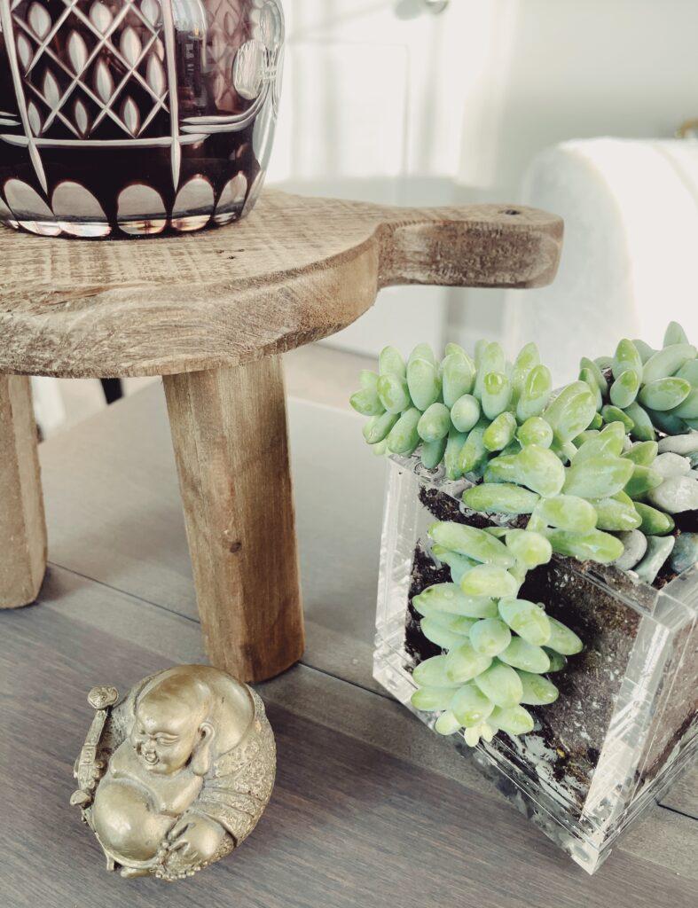 Succulent Garden Desk Vignette