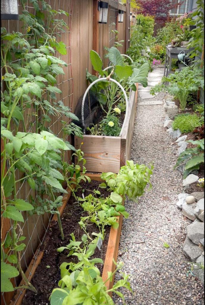 Dream Garden Entry