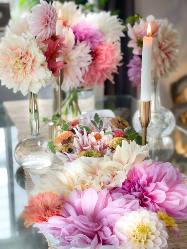 Dahlias not blooming table