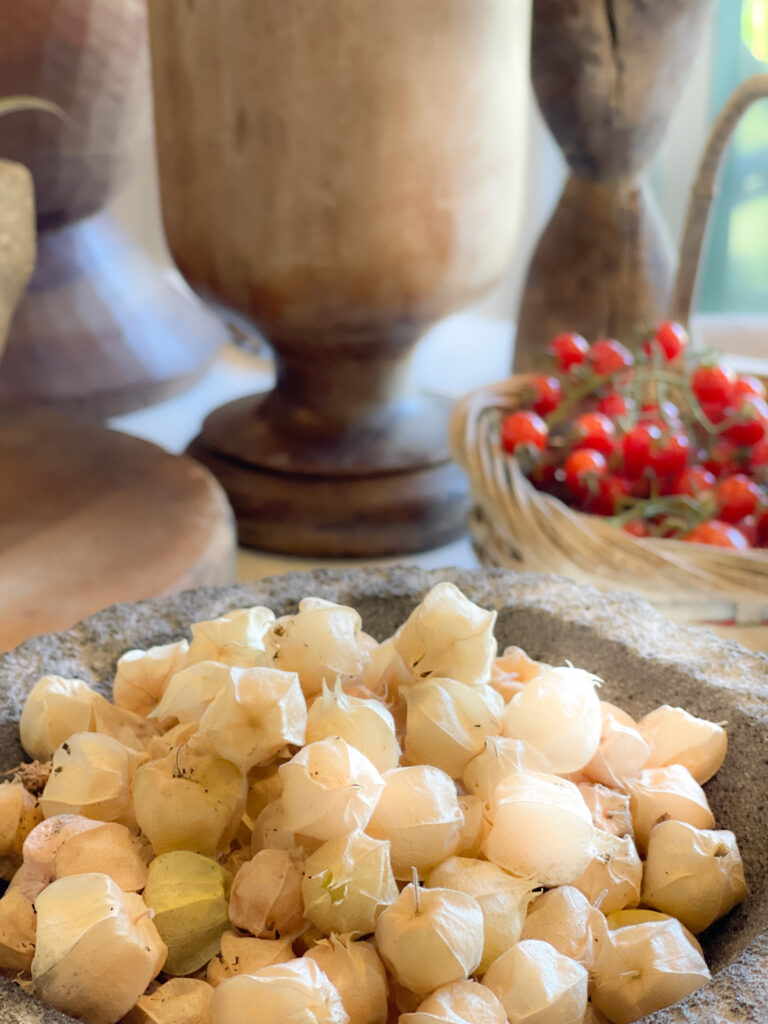 Ground Cherry Salad with Husks